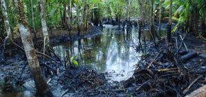 Río Pastaza en peligro de contaminación