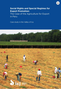 Ica: presentan libro sobre trabajadores del agro