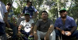 Experiencias de taladores a defensores de la naturaleza: El negocio de vivir del bosque sin tumbarlo