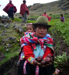 Pobreza de mujeres rurales en AL sigue en aumento: un 40% no posee ingresos propios