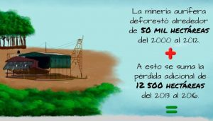 Perdemos casi 2 millones de hectáreas de bosques por deforestación en la amazonía (Monitoreo 2001 al 2015)