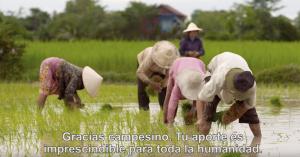 (Abril 2016) El video del Papa: pequeños agricultores