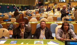 Foro Permanente sobre la Cuestión Indígena en la ONU