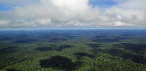 Amazonía: ver y escuchar
