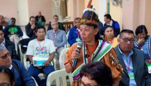 Informe proceso de consulta sinodal realizado por REPAM