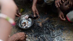 Más de 820 millones de personas padecen de hambre, según informe de la ONU