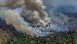 REPAM envía mensaje sobre la grave situación en la Amazonía