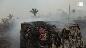 La naturaleza se quema y la política se agota