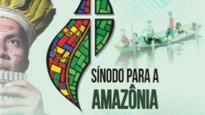 Riesgos y oportunidades del Sínodo de la Amazonía