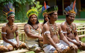 Querida Amazonía: sueños y tareas