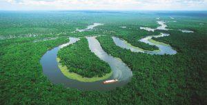 Iglesia peruana presentará hoy la Exhortación Apostólica 'Querida Amazonía' publicada por Francisco