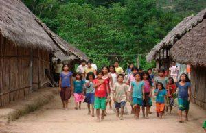 El CELAM se pronuncia tras publicación de Exhortación Apostólica 'Querida Amazonía'