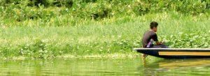 La Cuaresma de la REPAM: 40 días de conversión bajo la inspiración de 'Querida Amazonía'