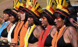 Panamazonía: 51% de mujeres pertenecen a grupos en situación de vulnerabilidad
