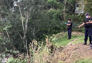 Huánuco: Alertan sobre deforestación de árboles defensores en Aucayacu