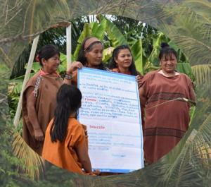 Organizan seminario virtual gratuito sobre mujeres indígenas y la conservación de bosques frente al Covid-19