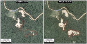 Amazonía peruana: Deforestación sigue aumentando de manera alarmante durante la pandemia
