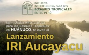 Huánuco: Nace IRI Aucayacu, una iniciativa para combatir la deforestación y cuidar la Amazonía