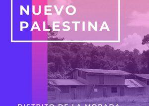 Alto Huallaga: Familias retornan a sus tierras y crean nuevos caseríos debido a la pandemia