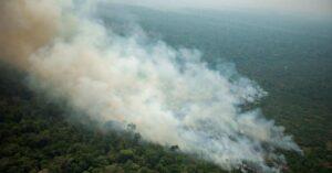 Declaran en emergencia climática a la Amazonía