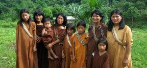 REPAM invita a participar de programa de formación sobre Derechos Humanos de Pueblos Originarios