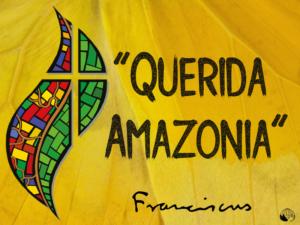 Obispos de la Amazonía peruana celebran primer aniversario de 'Querida Amazonía'