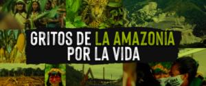 La REPAM y organizaciones indígenas trazan un plan para salvar a la Amazonía