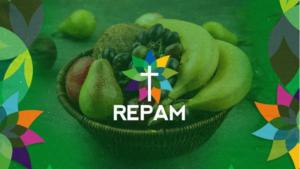 REPAM lanza la 'Cesta Amazónica', una guía para profundizar los conocimientos sobre la Amazonía