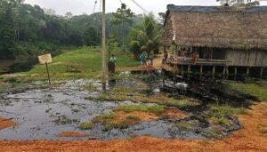 Amazonía peruana: Revelan altos niveles de plomo en sangre de pobladores indígenas
