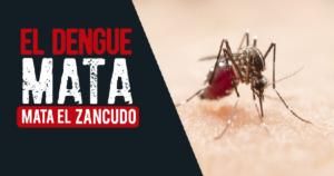 15 regiones del Perú en emergencia por brote de dengue